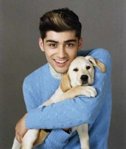 Zayn-Malik-cute-x-factor-dog-puppy-wonderland-560x662